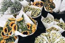 FLOWERS + JEWELS