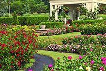 Garden: Maintenance
