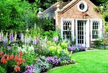 """The Garden Border / """"Though borders have long been an important element of gardens, the border of today in which plants are massed for a large-scale effect is a relatively recent phenomenon.""""                           Best Borders - Tony Lord"""