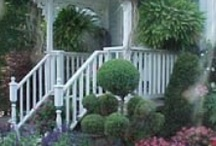 Curb Appeal / One of my favorite HGTV shows is called, Curb Appeal, Most of the time the redo is fantastic. As a gardener, I am interested in the landscaping that is linked with the renovations of the homes. I love these images that prove that curb appeal is important.