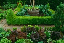 """Potagers -Kitchen Gardens / """"Even if you are growing a utilitarian potager, keep it orderly, use every inch, keep it unpretentious and you will be rewarded not only with your production, but with the beauty you have created."""" From my novel, Greening of a Heart"""