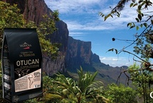 Otucan and Araguani - Pure Venezuela / by Valrhona USA