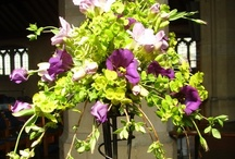 """Altar Flowers / """"The arrangement of flowers in church to the glory of God is an inspiration to worshippers...and an outlet for artistry."""" @Judith Blacklock's fabulous book Church Flowers. A must have if you are arranging flowers at church."""