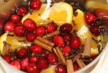 Christmas Recipes / Chestnuts roasting on an open fire or better still... orange slices or orange peels, cinnamon, nutmeg and cloves simmering on the stove. Favorite Christmas dishes with family and friends, celebrating this Holy Season, taste best.