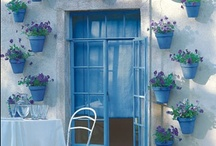 "ROOMS: Garden & Yard / Anything having to do with maintaining the outdoor areas of my home: ideas for repainting my front door, fixing my ""stoop"", landscaping.  Plants and vegetable gardening are located on my ""DIY: Gardening"" board."