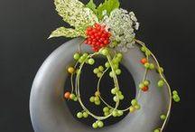 Ikebana / by Susan Anderson