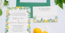 Florida Wedding Inspiration / Having a Florida wedding? We had so much fun creating some beautiful Florida-inspired wedding invitations! Whether you are having a classy, elegant soiree or a rustic, outdoorsy event, we have tons of awesome hand-drawn and watercolor motifs to fit your wedding style.