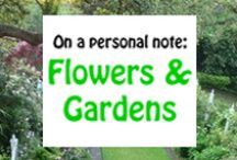 Flowers & Gardens / A place to go and daydream