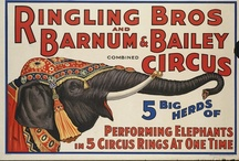 Circus Posters / by Moon Shine
