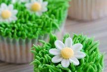 Cupcakes Yummo! / by Mary Erisman