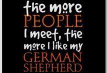 German Shepherd Love! / by Teresa M