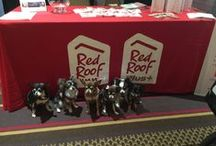 BlogPaws 2015 & 2016 / Red Roof's BlogPaws 2015 experience!