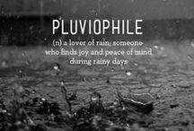 Pluviophilia / Rain