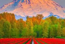USA Travel / Great places to visit in USA.