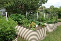 Earth Gardening & Permaculture Principles / All kinds of  ideas for outside earth growing which includes, worms, composting, wicking beds, permaculture and easy projects.ASC Magazine LIFETIME MEMBERSHIP. One time fee and no more debits. http://aquaponics-how-to-guide.info/oto/