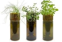 Container Gardening / Grow vegetables and other foods from containers. Just because you live in a small space doesn't mean you can't grow food. ASC Magazine LIFETIME MEMBERSHIP. One time fee and no more debits. http://aquaponics-how-to-guide.info/oto/