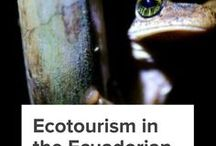 Ecotourism Destinations / Explore the beauty of Ecotourism Destinations around the World. We believe that Ecotourism– responsible travel that conserves the environment and improves the well-being of local people– is the future of travel.