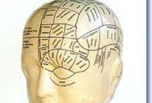 Psychognomie / Dit bord gaat over de psychognomie oftewel de gelaatkunde. Deze opleiding volg ik momenteel met veel interesse!