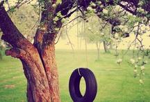 Swing On! / by Janet Davis