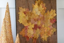 #harvestthyme / Fall decor and ideas, Thanksgiving and Halloween decor / by Melissa Bryant