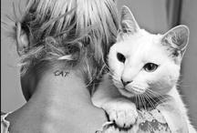 m e o w  / i may end up a cat lady.