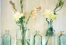 Flowers, plants & floral arrangements