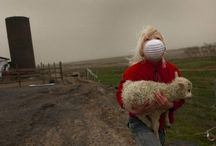 Awareness Photographers / by Desert Heart