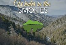 Winter in the Smokies / The Smoky Mountains become a beautiful winter wonderland in the cold season.