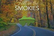 Fall In Love With The Smokies / The most beautiful part of the year to visit. Fall in the Smoky Mountains is one the best times to visit and view the changing leaves.