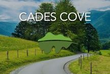 Cades Cove / This 11 mile scenic loop is one of the most peaceful drives you will find in all the Smokies. See historic cabins, Great Smoky Mountain wildlife and breathtaking views of the Smokies! If these pins don't make you want to come visit, we do not know what will!