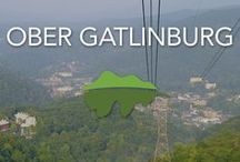 Ober Gatlinburg / With snow making machines to extend the natural season to enjoy the winter playground from Thanksgiving through Easter with fun including 9 slopes for skiers and snow boarders of all skill levels, snow tubing, equipment rental, and lessons. A natural wildlife encounter and outdoor rides to enjoy the outdoors gives a great reason to visit in the warmer seasons.