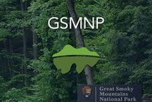 Great Smoky Mountains National Park / The Great Smoky Mountains National Park is a 800-square-mile mountain wilderness. It protects the largest swatch of upland forest east of the Mississippi.
