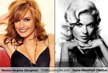 Mariska--Jayne / Mariska has become a great actress, and a great person,  Her mom would be so proud. / by Jessica Marciel