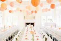 Entertaining and Holiday Decor / by Lauren Wachtstetter
