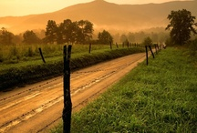 """Country road, take me home"" / by Teresa Mitchell"