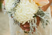 Toss the bouquet / by Kayleigh Rich