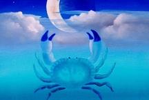 A Crabby Cancer /  My Zodiac Characteristics / by Jamie Roy