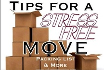 Organizing Tips & Tricks