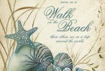 A Walk on the Beach / by *★ Sandra 'Sandi' Rosenberger ★*
