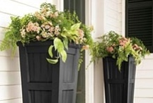DIY - Outdoor Design / by Kate Anthony