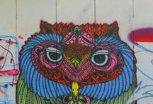 Owls are Cool / by Les Levine