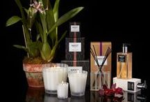 Moroccan Amber Home Fragrance Collection / Moroccan amber, sweet patchouli, heliotrope and bergamot are accented with a hint of eucalyptus.