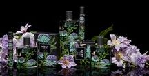 Indigo Fine Fragrance Collection / EXOTIC   Moroccan tea, kashmir wood and black cardamom are enhanced with hints of wild fig and bergamot.