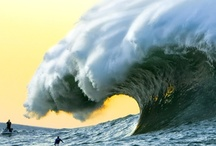 Ocean Waves and all Natrual Habitats  / Amazing Pictures / by Erika Cohen