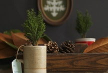 Winter decorating, crafts, recipes, inspiration / by Holly Tierney-Bedord