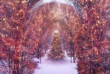 christmas / by Lynn Guerrero Goldman