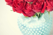 aqua & red