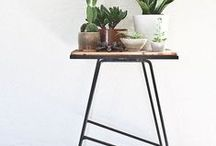 Home/Plants