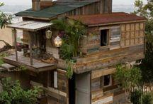 tree houses / Stevens desire