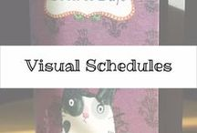 Visual Schedules / Visual Schedules for special needs students and people to help them follow routine and know what needs to be done that day.